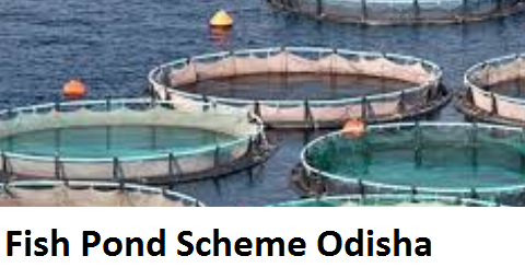 Fish Pond Scheme Odisha