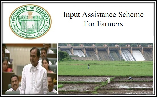Image result for cash support schemes for farmers