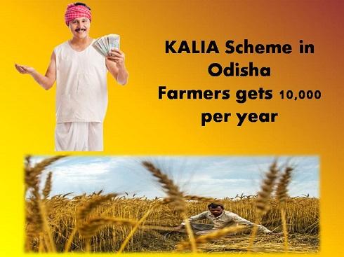 kalia-scheme-odisha